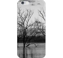 Trees in the lake iPhone Case/Skin