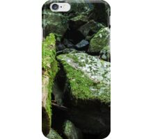Mossy log iPhone Case/Skin
