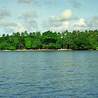 Solomon Islands Scenery by Kristin Nichole Hamm