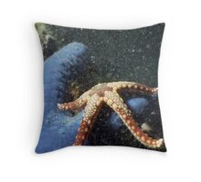 Two Starfish Throw Pillow