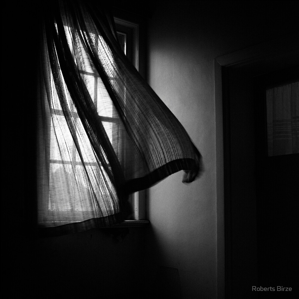 An overwhelming dread came over me ... the window was closed. by Roberts Birze