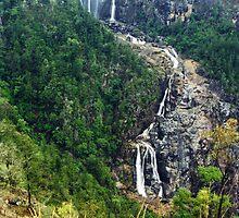 Blencoe Falls in flood - North Queensland by Paul Gilbert