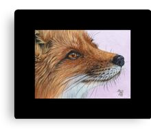 Fox #6 Canvas Print