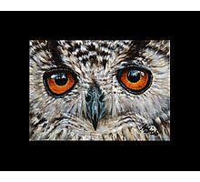 Owl #1 Photographic Print