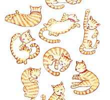 Orange Tabby Cats by Cynthia Arre