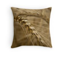 Wheat stalk. Throw Pillow
