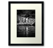 Reflecting on Friendship Framed Print