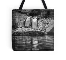 Reflecting on Friendship Tote Bag