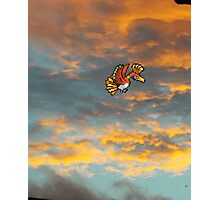 ho-oh Photographic Print
