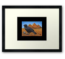 Treasure Seeker #7 Framed Print