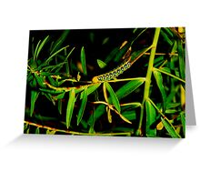 Alive in green #4 Greeting Card