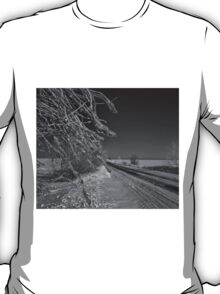 Icy Branches T-Shirt