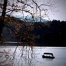 Lake Bled with boat by Elana Bailey