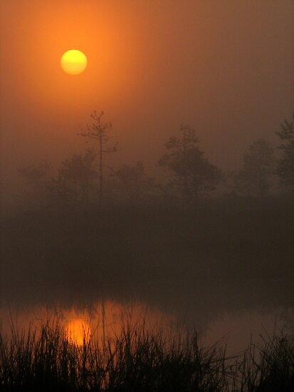 'Red Dawn Rising' by Petri Volanen