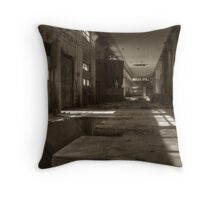 'Quiet afternoon' Throw Pillow