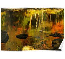 Monet autumnal Poster