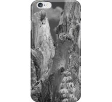 Snag 2 iPhone Case/Skin