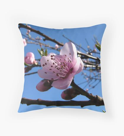 Nectarine to be... Throw Pillow