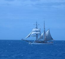 High Seas Sailing by ixiaking