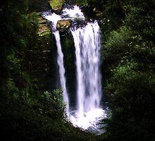 Hopetoun Falls by Andrew S