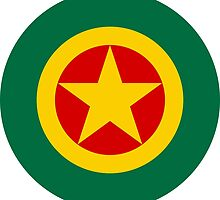 Roundel of the Ethiopian Air Force  by abbeyz71