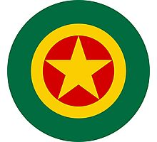 Roundel of the Ethiopian Air Force  Photographic Print