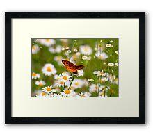 Plant Your Secret Garden Framed Print