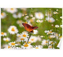 Plant Your Secret Garden Poster