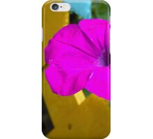 Petunia flower 13 iPhone Case/Skin