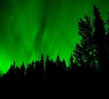 September Auroras #3 by peaceofthenorth