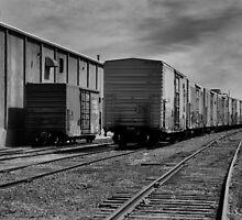 Laying Tracks by J. D. Adsit
