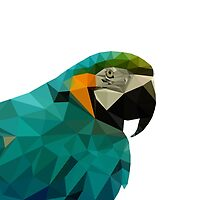 parrot low poly by tony4urban