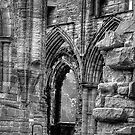 Tintern Abbey 3 by PaulHealey