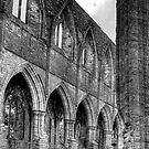 Tintern Abbey 1 by PaulHealey