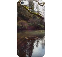 Garden at Rest iPhone Case/Skin