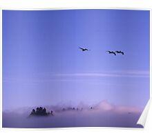 Rialto Beach, Olympia Penninsula, Washington Poster