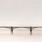 Clevedon Pier by Paul Woloschuk