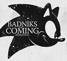 Badniks are Coming - Hedgehog by gabriel-arruda
