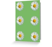 Six white daisies Greeting Card