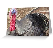 Gobble, Gobble Greeting Card