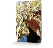 Waterhole - Kings Canyon Greeting Card