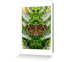 Reflections Of A Pearl Crescent Greeting Card