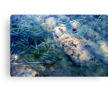 First Ice Layer Canvas Print