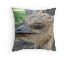 Ostrich, Lion park, Gauteng Throw Pillow