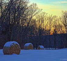 Winter in the Country by Mike Griffiths