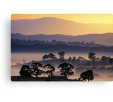 Sunrise, Kangaroo Ground, Yarra Valley. Canvas Print