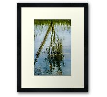 Tree reflected in water  Framed Print