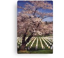 Arlington National Cemetery 5 Canvas Print