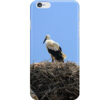 storks nesting on an electric pole  iPhone Case/Skin