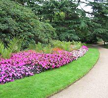 Trail in Greenwich Park by yankeegrl99